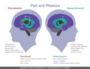 Brain_Pain-and-Pleasure_D4