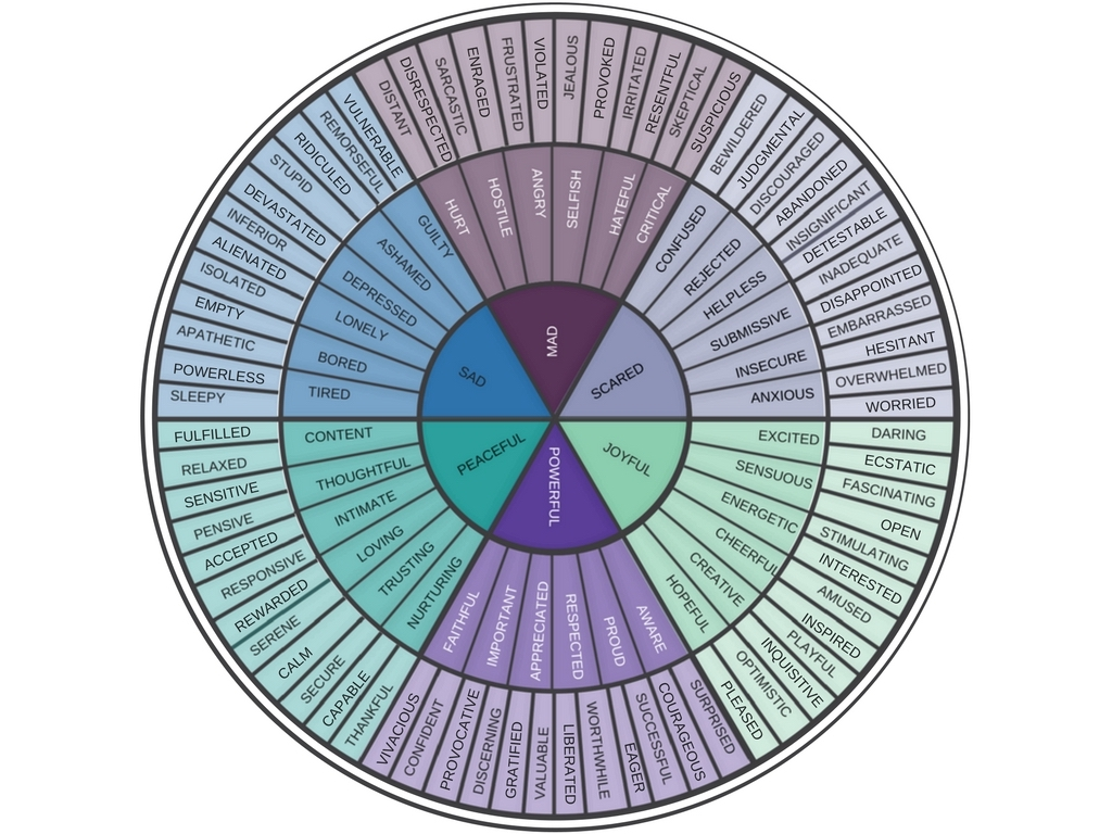 Use the emotion wheel for mental health