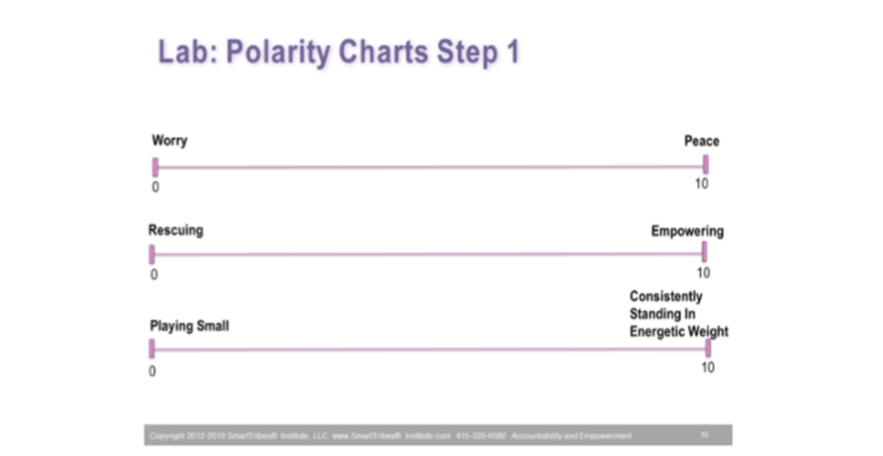 Polarity Chart Lab 1 Bust Your Leadership Blindspot