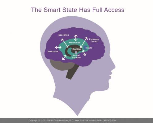 Smart State(1)