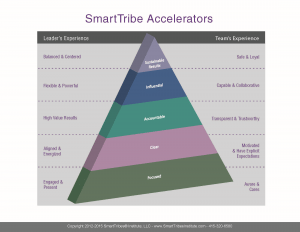Smart Tribe Accelerators