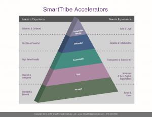 Smart Tribe Accelerators