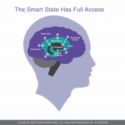 The Smart State - Brain Image